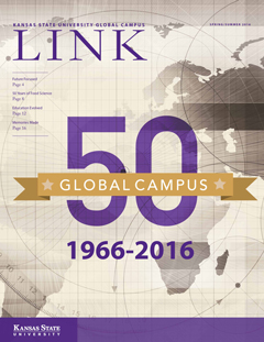 Link 50th Anniversary Cover